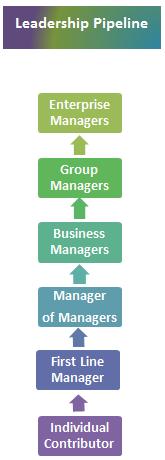 Comprehensive-leadership-development-2